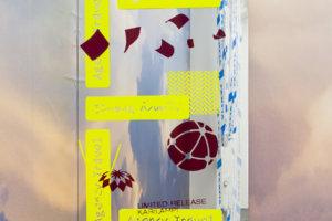 Ilja Karilampi E for Embassy Selfadhesive foil on mirror 60 x 96 cm 2018